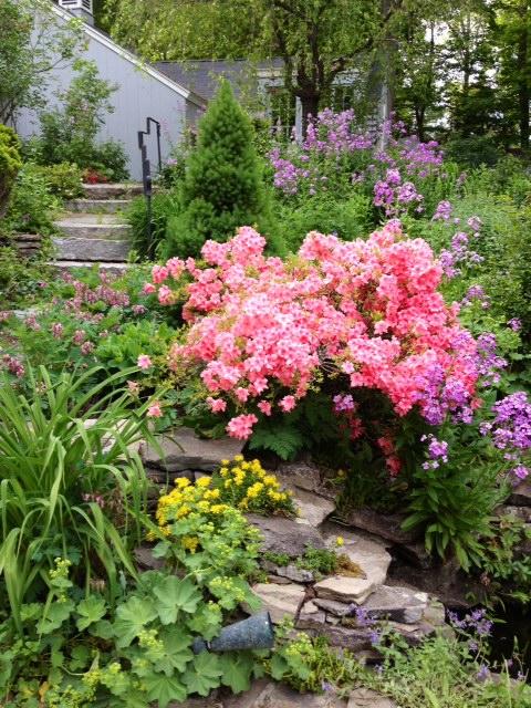 Sallie's Garden