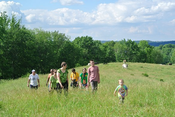 Group in pasture 6/13