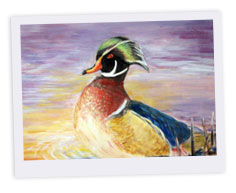 Junior Duck Stamp