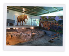 Waco Mammoth Site