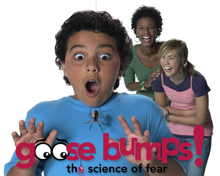 Goose Bumps! The Science of Fear
