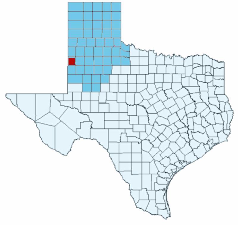 Cochran County, TX