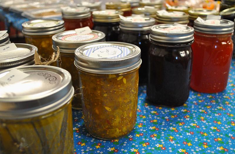 Panhandle Museum Day jellies