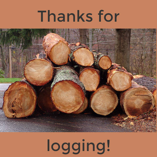 Thanks for logging!