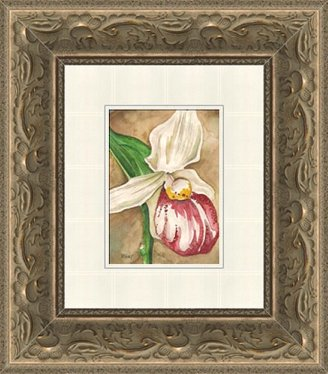 Lady's Slipper Framed