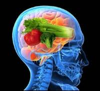 Nutrient Brain