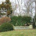 Greenwich Forest