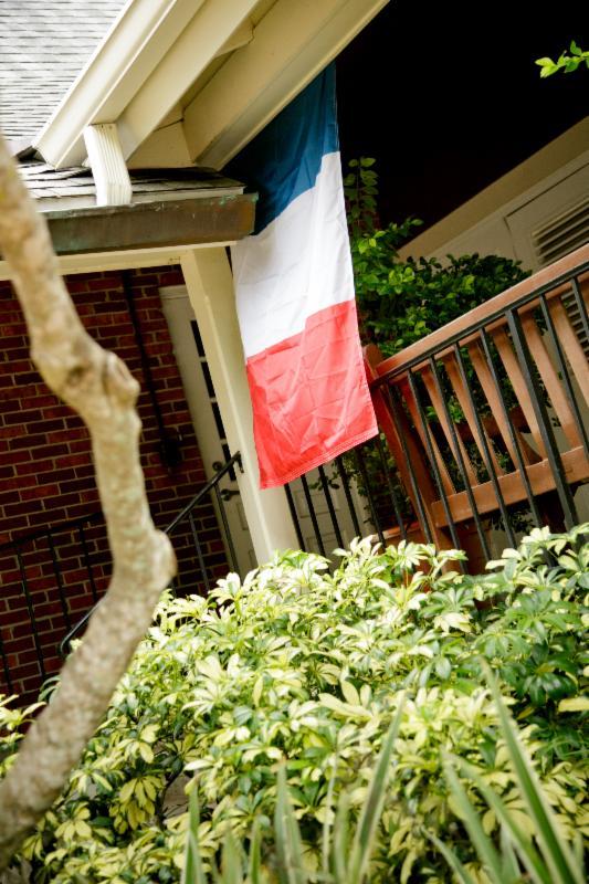 Bastille Day flag