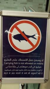 No Fish on the Train