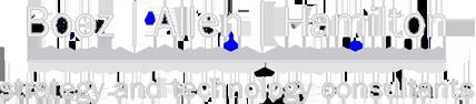 BAH White Logo