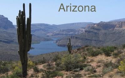 arizona word