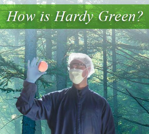 Green at Hardy