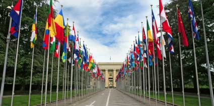 United Nations Geneva Flags Image