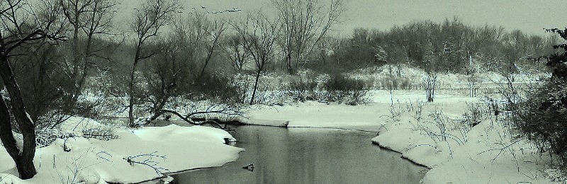 taylor creek_winter2013
