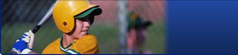 baseball hitter long shot pic