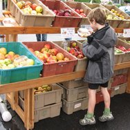 kid shopping for apples on his tip toes