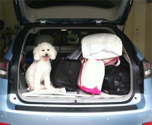 Austen trunk trip
